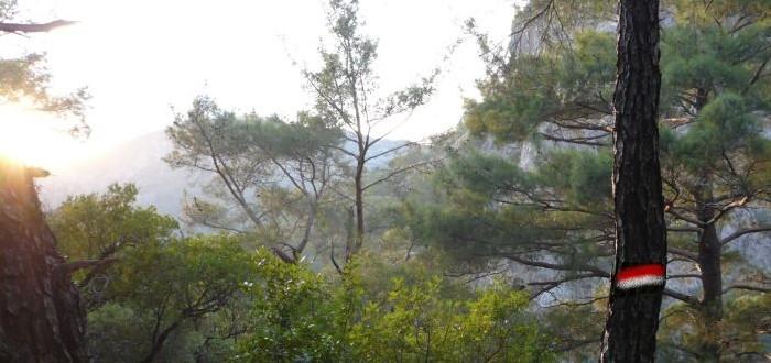 lycian way trek